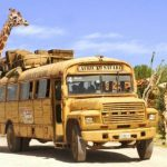 tour-africam-safari-puebla