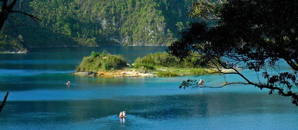 Laguna San Ignacio Eco Tour